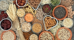 Global Fiber And Specialty Carbohydrate Market