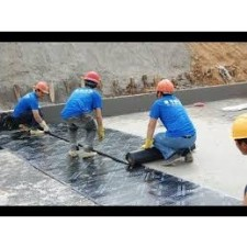 Global Liquid Applied Membrane for Construction Market